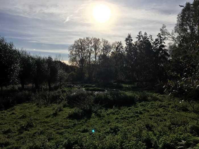 Vergaderen in de natuur: zicht op de tuin